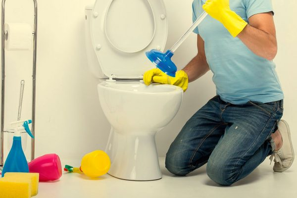 renta de baños